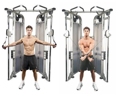 想练出完美手臂的肌肉,如何打破增肌难题?看完你就明白了